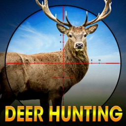 Deer Hunting Wild Animal Shoot