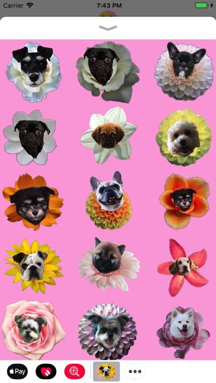 Puppy Bouquet screenshot-3