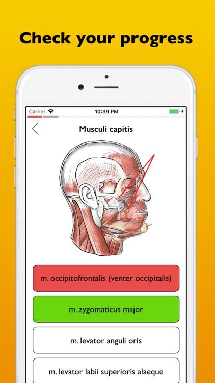 Myology atlas app
