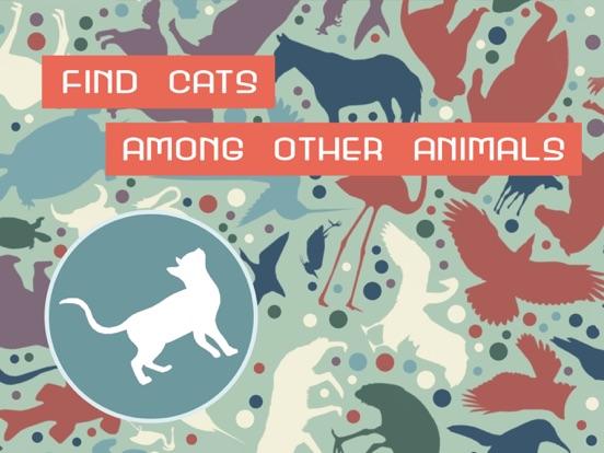 Find Cats: Hidden Object screenshot 6