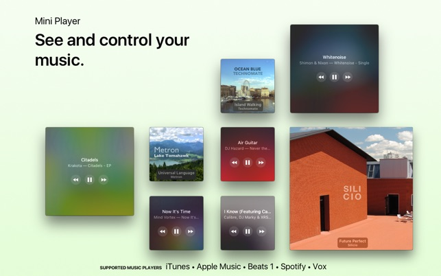 Silicio for Spotify and iTunes on the Mac App Store