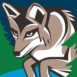 LTCC Coyote Corner