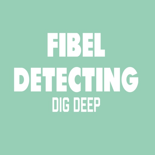 Fibel Metal Detecting