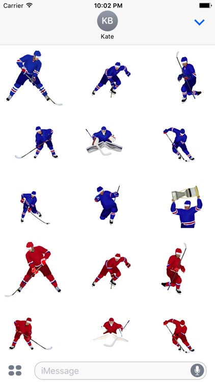 Hockey! Stickers