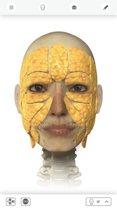 Interactive Anatomy - UK & IRE screenshot two