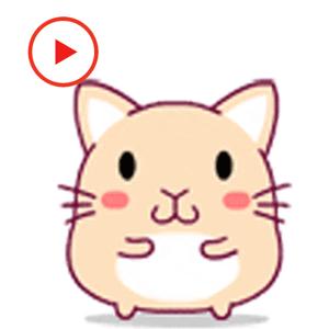 Fat Rat Animated Stickers app