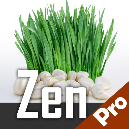Zen music for relaxation and meditation - Amazing portable Zen garden calming nature soothing sounds radio stations with melodies for deep sleep in your pocket