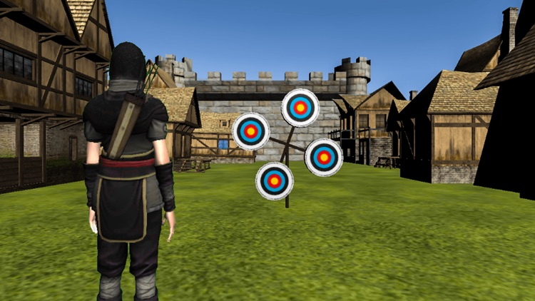 Archery Training Match screenshot-1