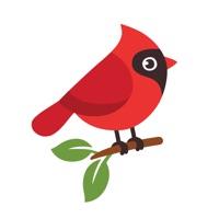 Name the bird! Hack Resources Generator online