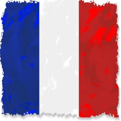 French Test A1 A2 B1 + Grammar on the App Store