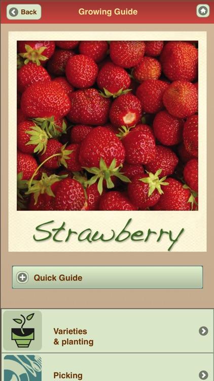 Growing Your Own Organic Fruit
