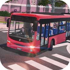 Activities of City Bus Tourist