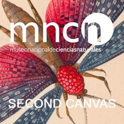 SC Museo Ciencias Naturales