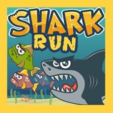 Activities of SharkRun!