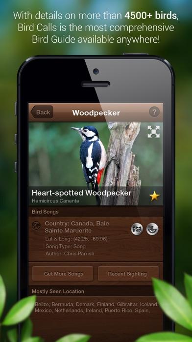 Bird Songs - Bird Call & Guide screenshot two
