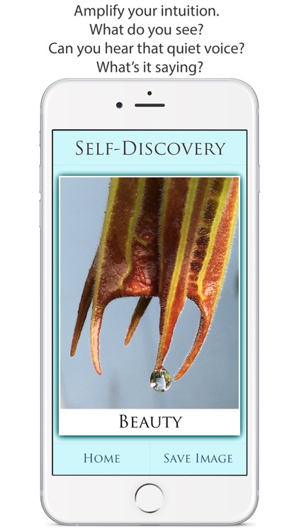 Self-Discovery screenshot-1