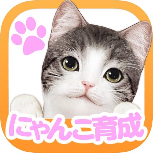 てのひらニャンコ【スマホでにゃんこ育成】