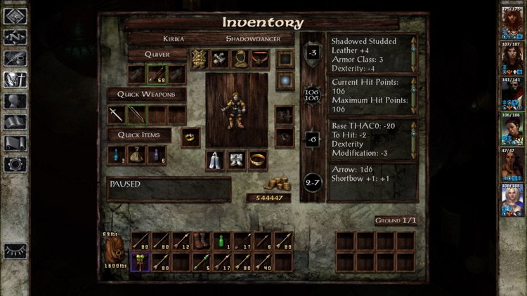 Icewind Dale screenshot-4
