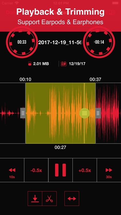 Recorder App Pro screenshot-1