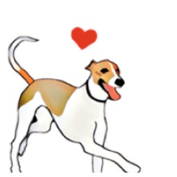 Whippet Dog - DogSport Sticker