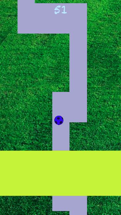 Line Roll - Premium screenshot 2