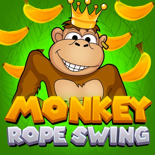 Monkey Rope Swing
