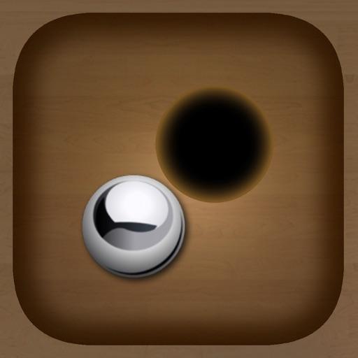 Black Holes.