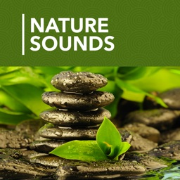 1000 Nature Sleep Relax Sounds