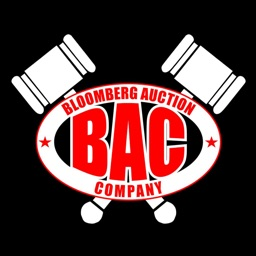 Bloomberg Auction