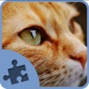 Cat and Kitten Jigsaw Puzzles