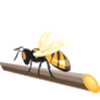 BugBranch