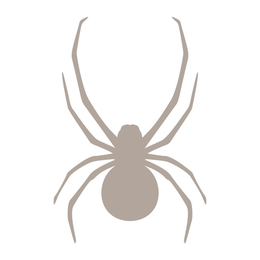 Fieldstone Guide: Spiders