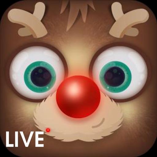 Reindeer Live Cam