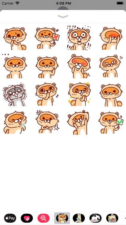 Lovely Raccoon Stickers