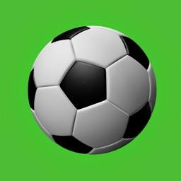 Soccer Teammate