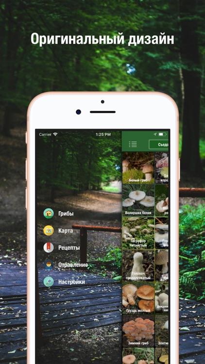 iГрибник: Грибы всего мира screenshot-3