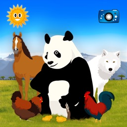 Animals (chinese version)