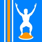 Virtual Trainer Bosu Ball icon