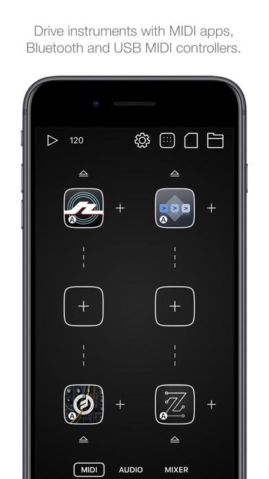 Audiobus 3 Screenshot 2