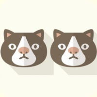 Codes for Animal Twins Puzzle Hack