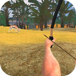 Archery Shooting Quest
