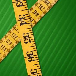 Fast Area Measurement