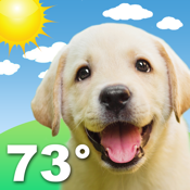 Weather Puppy app review