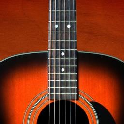 Guitar Companion