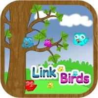 Codes for Link Birds Line Hack