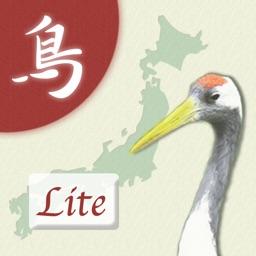 Japanese Birds 50