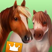 HorseWorld: 高级套餐