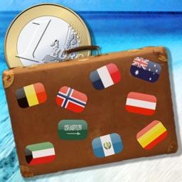 Travelers Wallet