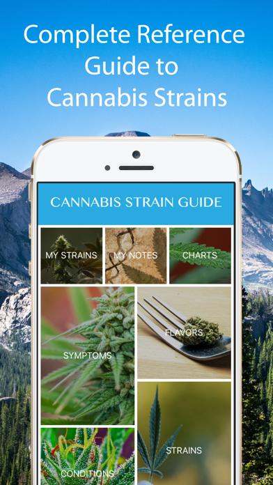 Cannabis Strain Guide