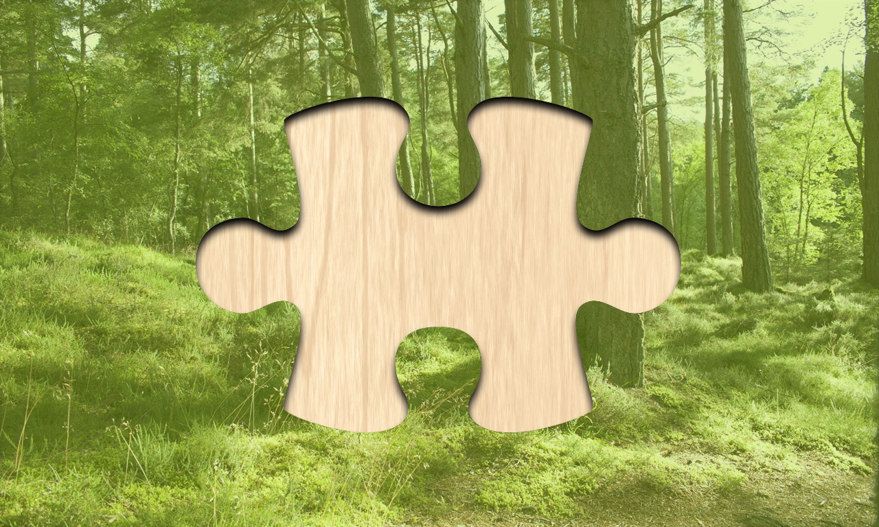 Picture Puzzlers